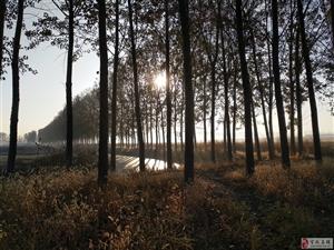 《秋晨过田间》