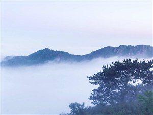 黄花山云海美景如画