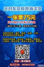 【全年有票】开封东京极地海洋馆75元一张门票
