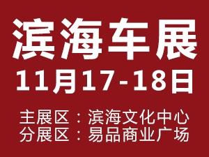 11月17-18日滨海车展