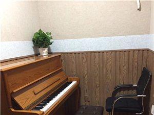 涛声琴行乐器销售和培训