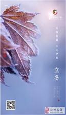 【绿洲·望嵩文化广场】立冬 万物收藏 冬之伊始