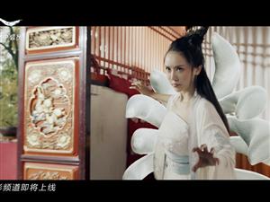 电影《千年白狐》今天下午正式在爱奇艺上映!!!