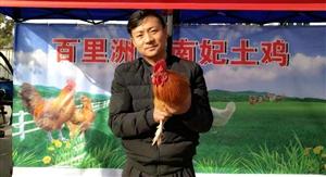 老板疯了?土鸡先吃后付钱、不满意不要钱,枝江有史第一次