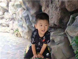 紧急!下午澳博国际娱乐步行街一名两岁多小朋友走失!望大家接力转发寻找