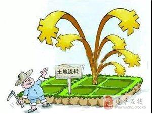 明年粮食补贴再调整!这些农民将拿不到补贴…快来看看有啥变化!