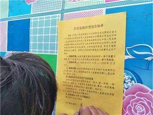 巴彦县松花江乡超前谋划,创新方式,强力推进秸秆综合利用倒逼禁烧