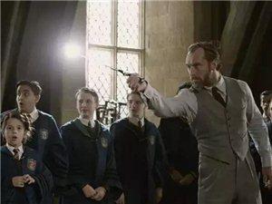 《神奇动物:格林德沃之罪》    11.16震撼上映