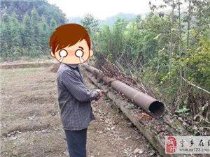 窃贼投案自首,宁乡这个村的村民都惊呆了