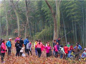 皇莆山的松原公园