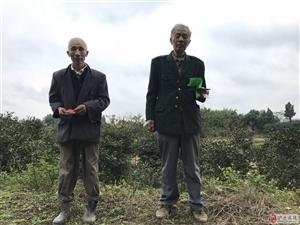 【扩散】20亩苗圃,一位6旬残疾老人晚年的希望