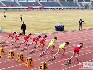 2018年安庆市中学生田径运动会鸣金 桐城代表队获佳绩