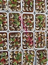 丹东冰点草莓批发 辽宁海鲜批发 海鲜即食海产品