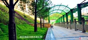 环境好,绿化好,空气清新,视野开阔,风水好。健康,生态,宜居小区