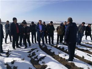五一种畜场组织职工群众外出考察金莲花种植项目