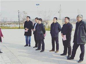 省政协赴合阳县调研改善农村人居环境工作