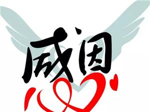 """鼎盛&#8226金领""""转""""满钵盈,最高500元购物卡大放送,更有亲子DIY嗨翻周"""