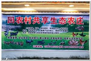 回农村共享生态农庄:品家常、吃绿色、玩开心,请电话15883407339
