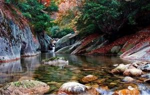 红叶溪流相映红醉在深秋大悟十八潭