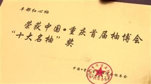 """【中国重庆首届柚博会】丰都红心柚获""""十大名柚""""奖"""