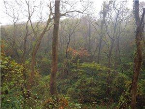 皇莆山的松原公园――的九寨沟