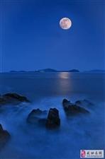 【绿野书院】望月