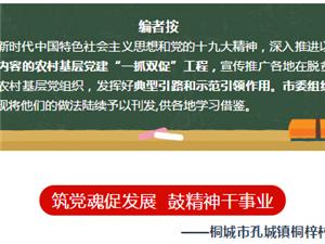 桐城这个村成了先进典型案例 两次上央视!