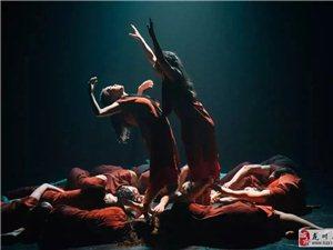 【原创舞蹈】 广东现代舞团、新西兰弗特诺舞团舞蹈巨制《源・移》