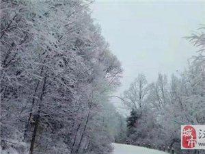 威尼斯人网上娱乐平台又下雪了,真的好冷!