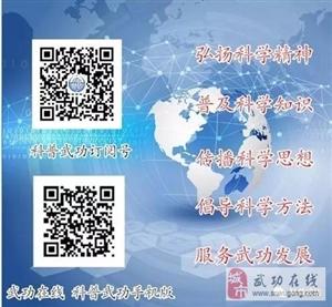 【科普武功】武功县科协开展猕猴桃种植技术培训(第十八期)