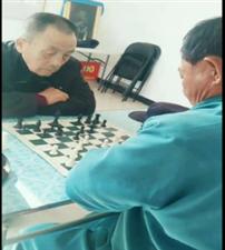 """正蓝旗举办第二届""""天平""""杯"""