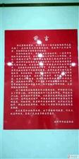 观展滨州市第十一届书法临帖展盛况,拍到我县书家作品。