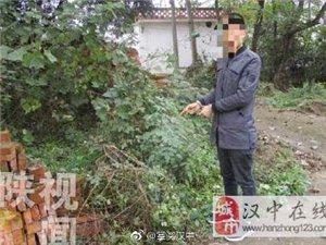 汉中6旬老人晨练路上被撞身亡,肇事司机逃逸3天后投案!