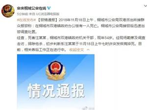 桐城双港镇政府办公楼一人死亡的警情通报!