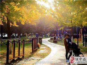 还在苦苦寻觅威尼斯人网上娱乐平台晚秋美景?她已经悄悄跑进滨江公园里