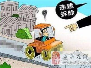 非法栽种挡道路