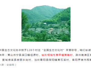 桐城一村被评为2018全国生态文化村!