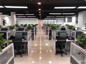 华夏银行客服招聘朝九晚六