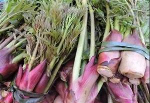 丰都农村喂猪的变成了美食,这些野菜你都认识吗?
