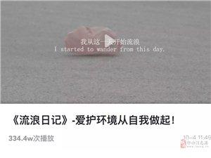 �h保公益��l《流浪日�》,在微博上火了!