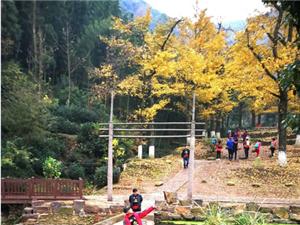 20181114:邹城美利达环太湖骑游(第五天)《2》