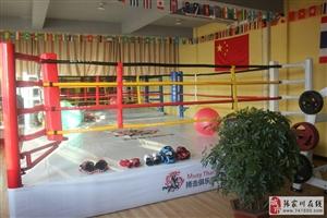 武林高手看过来!张家川第一家泰拳博击俱乐部成立