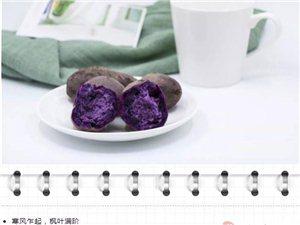 每周一酵|宁神安眠,紫薯苹果鲜酿酵素!