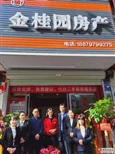 热烈祝贺金桂园房产盛大开业