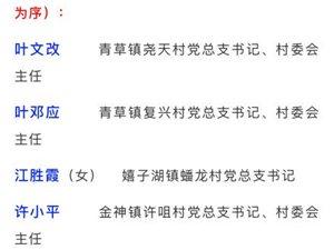 """公示桐城市""""十佳村社区党组织书记""""和""""十佳村(居)委会主任"""