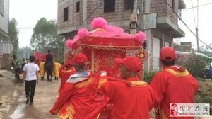 化州首例,八大花轿仿古婚礼,场面振憾!