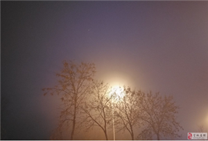 《如梦令・雾》