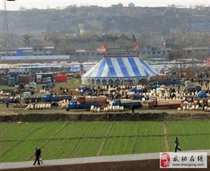 """【有邰史韵】乡音  武功有个""""河滩会""""(文:官新柱)"""