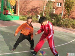 狗亚体育ios版县帕沃体育——武术散打、跆拳道、篮球