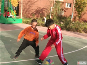 山阳县帕沃体育――武术散打、跆拳道、篮球